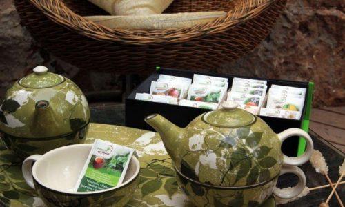 תה עדנים- צל אלון